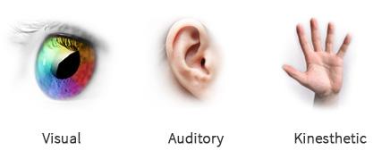 Sensory stimulation theory of learning Essay Sample